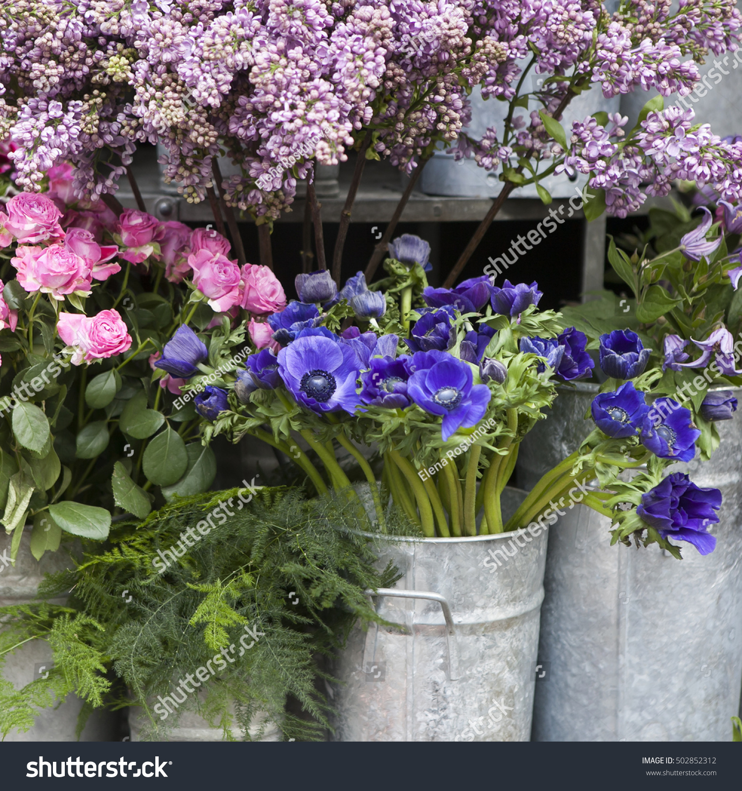Red And Blue Spring Flower Arrangement Anemones Ranoncullus And