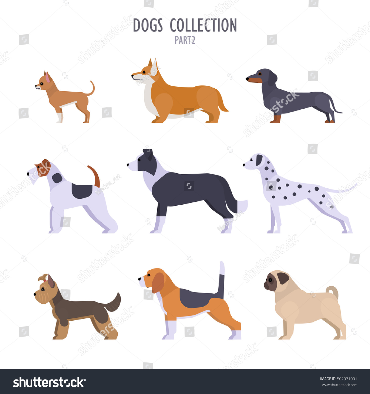 Types Of Toy Dog Breeds : Vector collection different dogs breeds toy stock