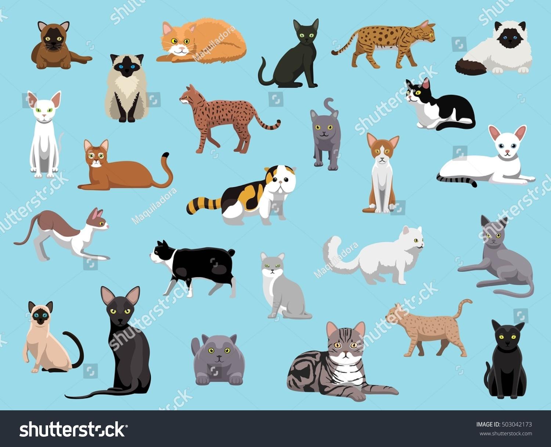 25 Cat Breeds Cartoon Vector Illustration Stock Vector