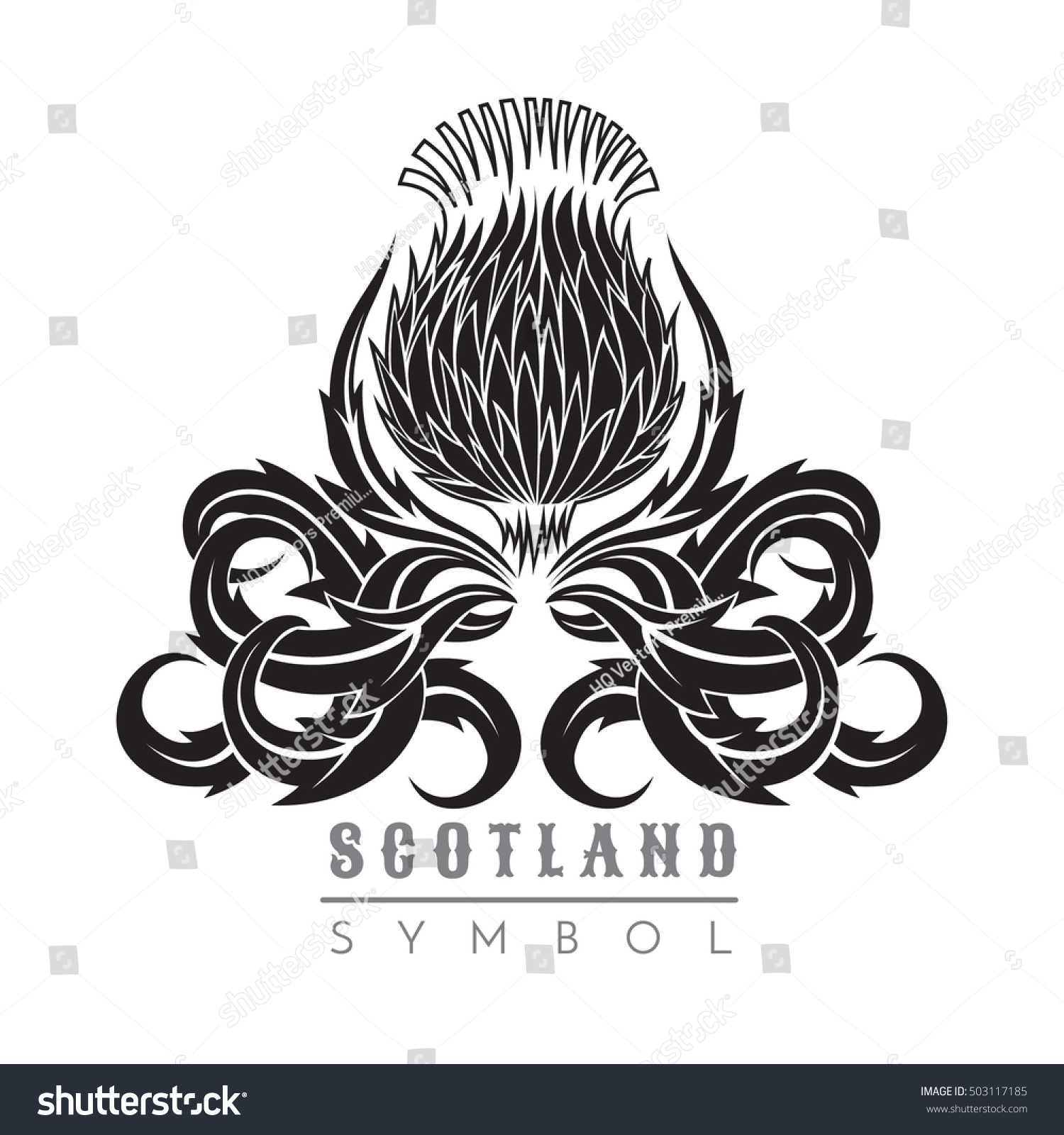 Silhouette Thistle Leaf Pattern Symbol Scotland Stock Vector ...