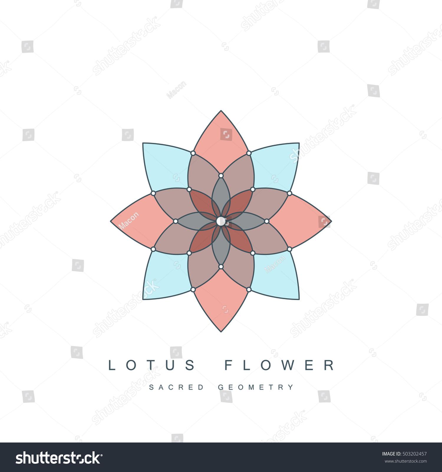 Flower Life Sacred Geometry Lotus Flower Stock Vector Royalty Free