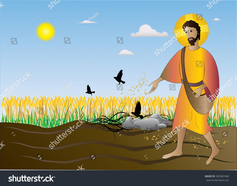 sower seeding seeds gospel parable bible stock illustration