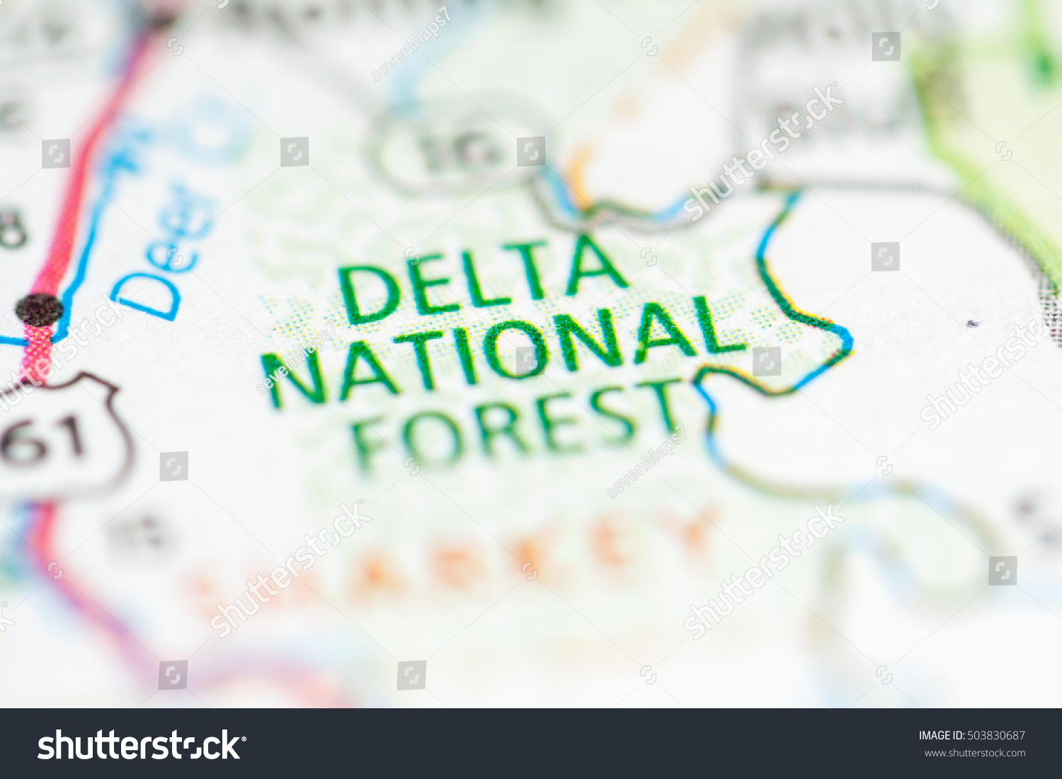 Delta National Forest Mississippi Usa Stock Photo (Edit Now ... on natchez trace parkway map, central time zone map, rio grande colorado forest service map, delta national wildlife refuge map, alabama cheaha state park trail map, delta utah map, delta s in the us, delta fishing map, sacramento delta map, delta river map, delta water map, delta state map, mississippi map,