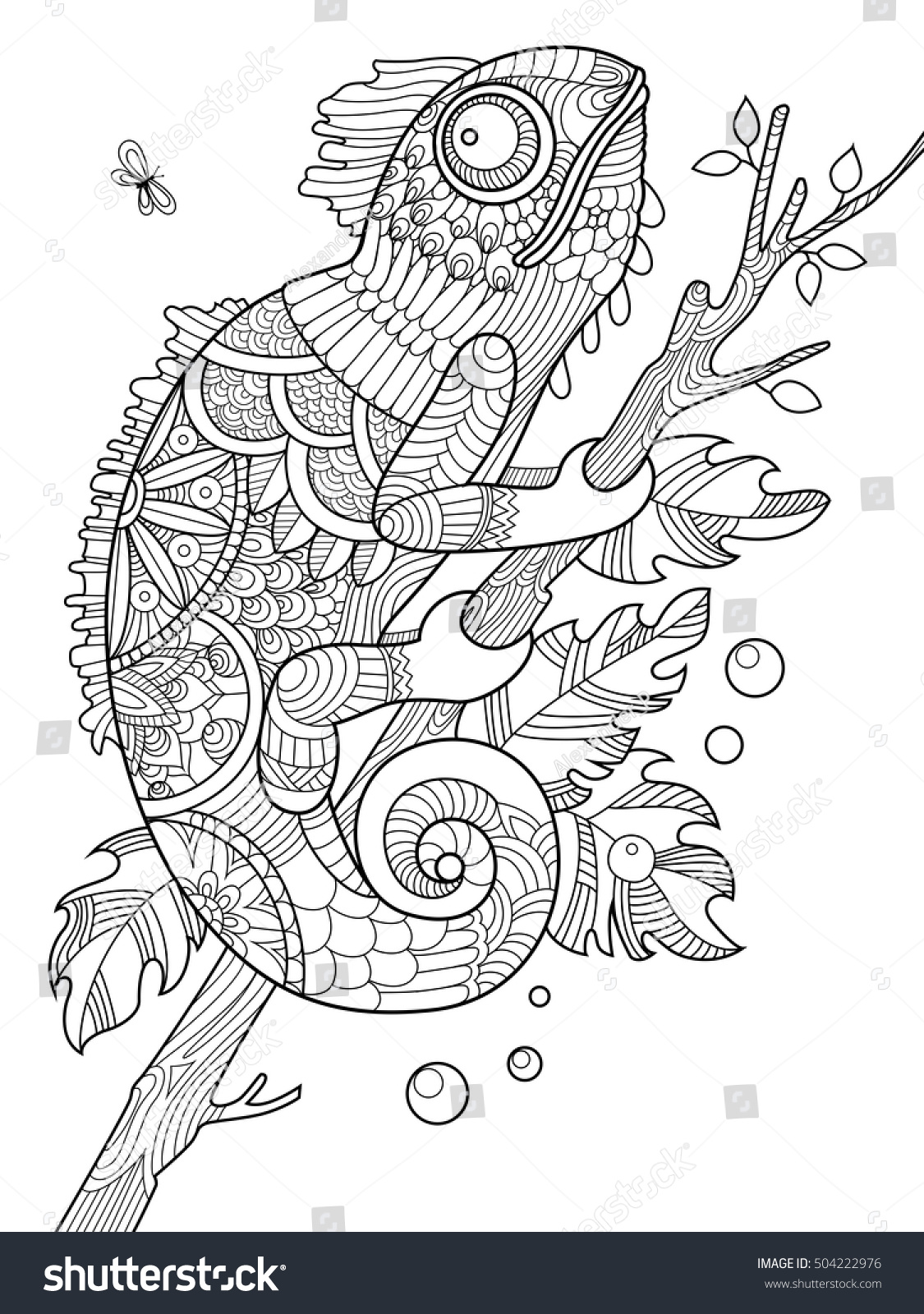 chameleon coloring book adults vector illustration stock vector