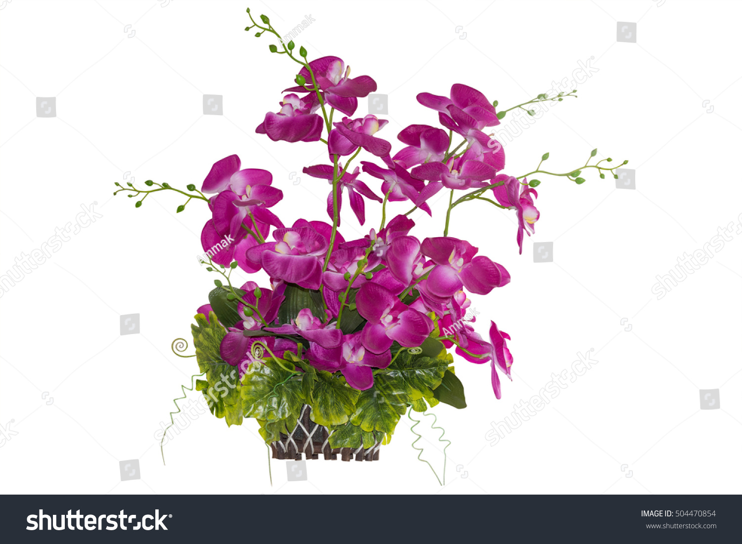 Orchid Plastic Flower Pink Color Basket Stock Photo (Edit Now ...
