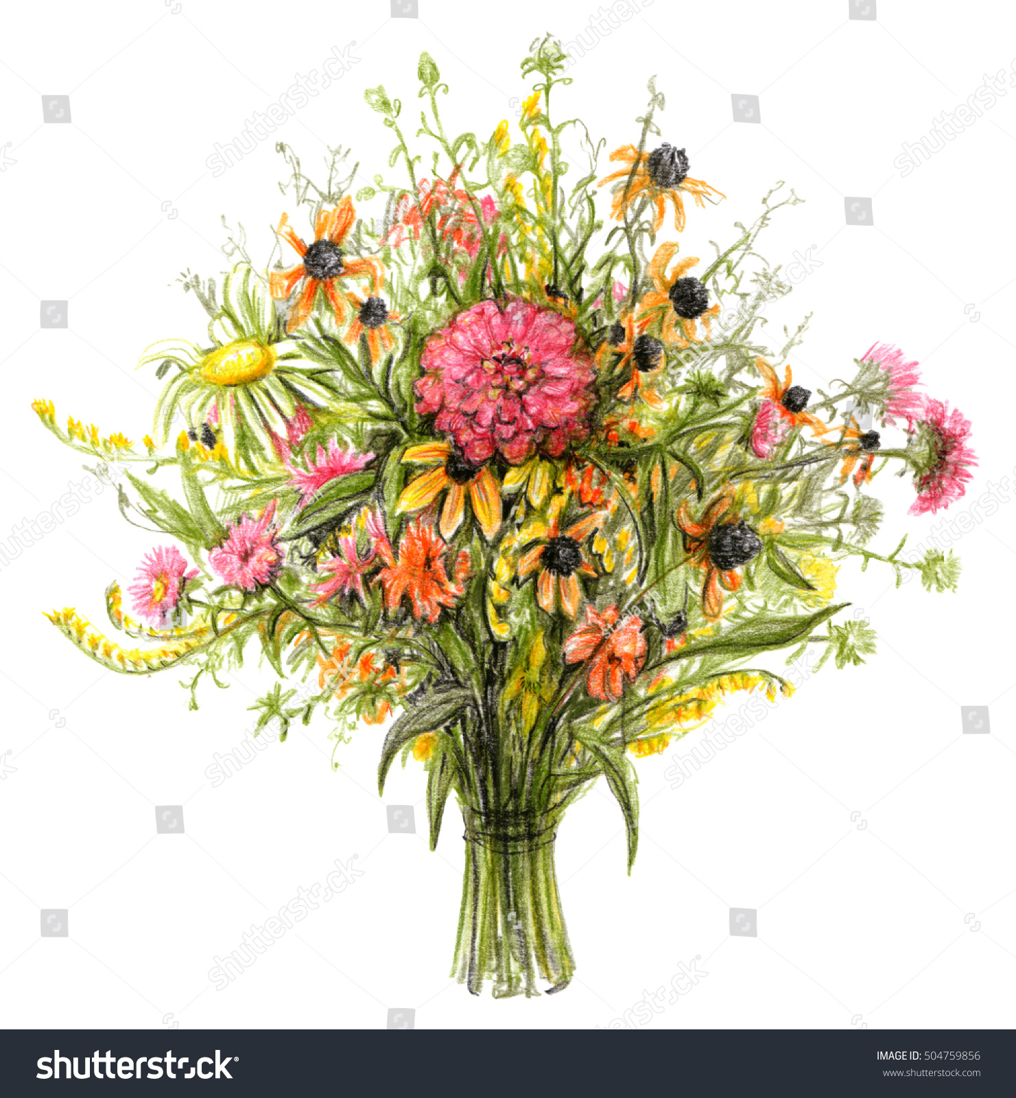 Flowers bouquet color pencil illustration summer stock illustration flowers bouquet color pencil illustration of summer wild flowers and plants isolated on white izmirmasajfo