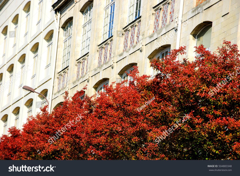 La Butte Aux Cailles Photos red autumn trees butteauxcailles quarter paris stock image