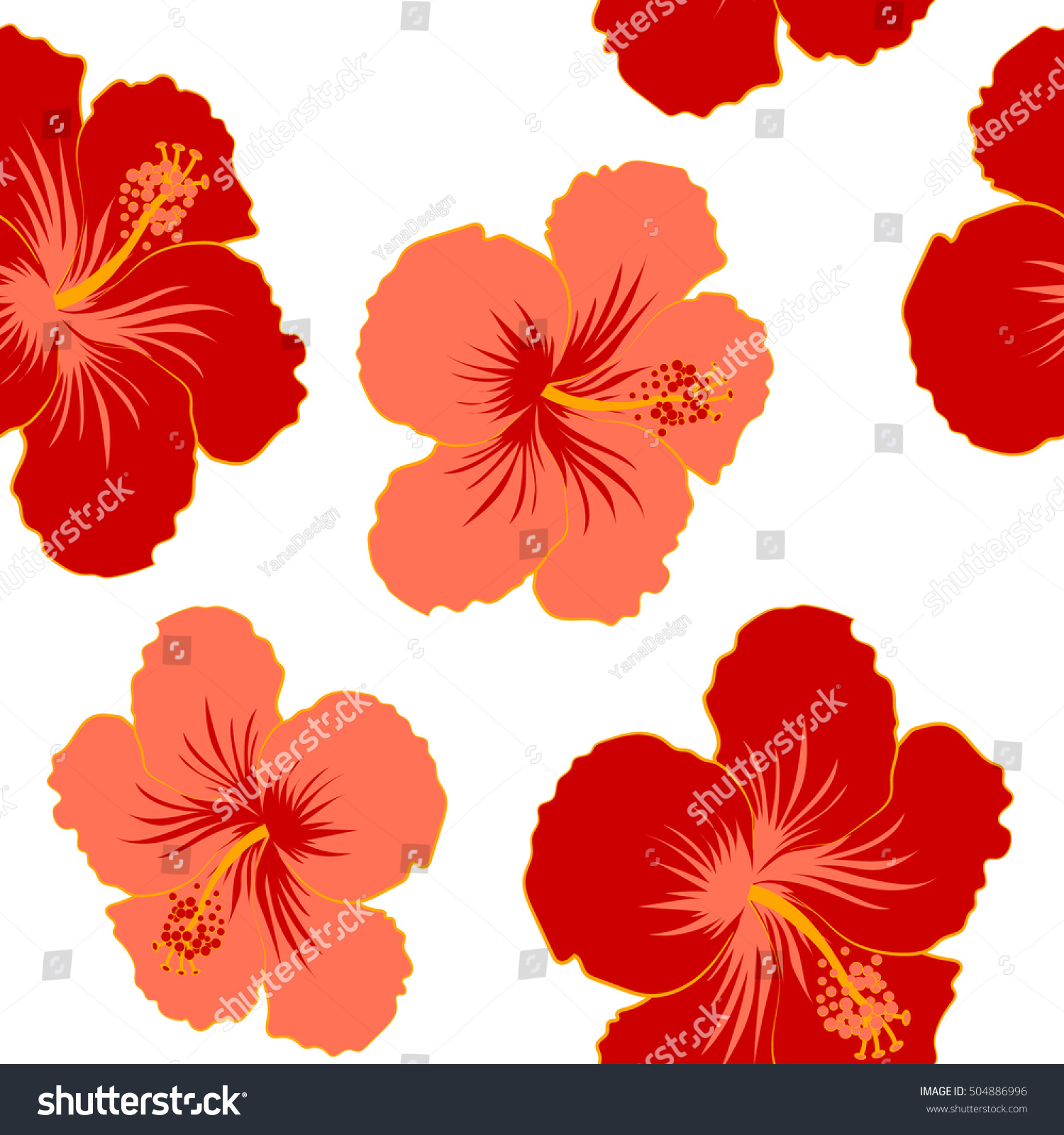 Vector Hand Drawn Painting Hibiscus Flowers Stock Vector 504886996 ...