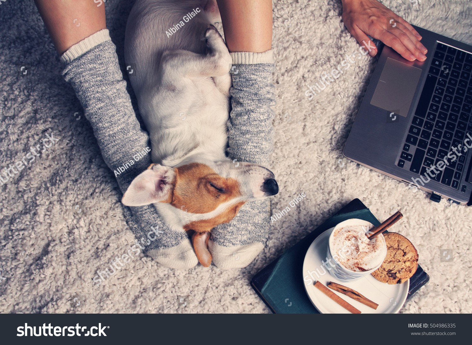 Woman in cozy home wear relaxing at home with sleeping dog Jack Russel terrier drinking cacao using laptop top view Soft comfy lifestyle