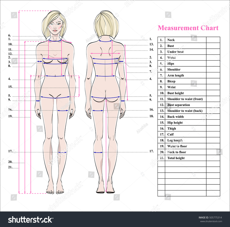 body measurement chart fitness