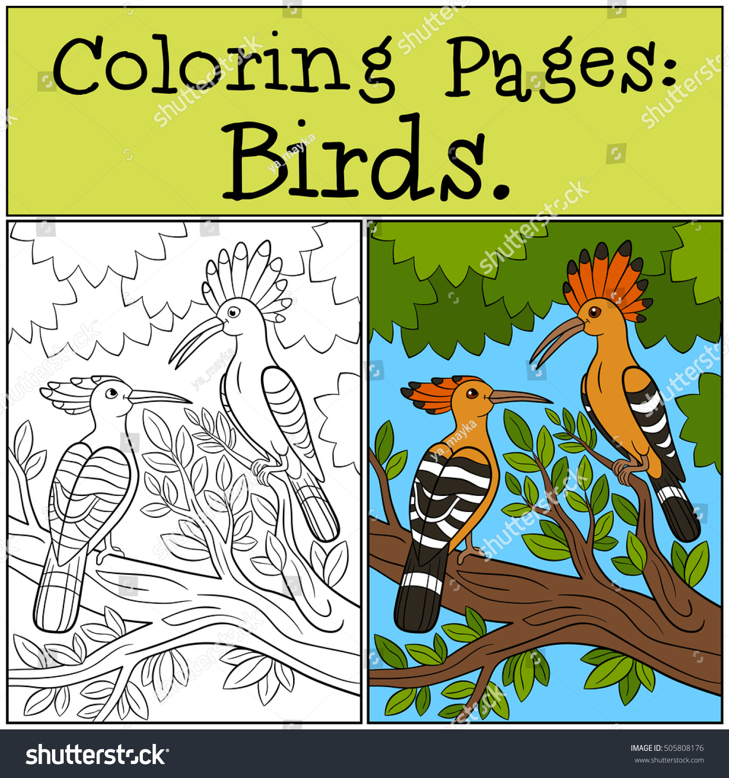 Coloring Pages Birds Two Cute Beautiful Stock Vector 505808176 ...