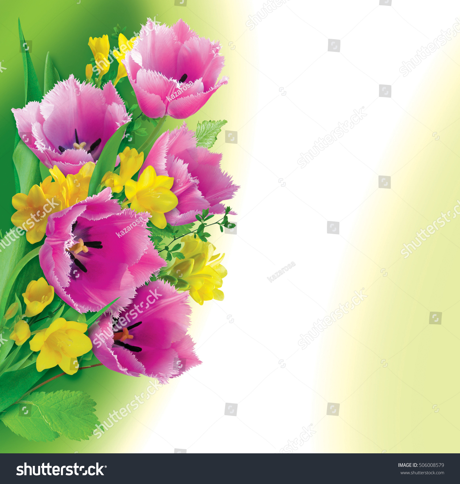 Floral Background Beautiful Spring Flowers Decoration Stock