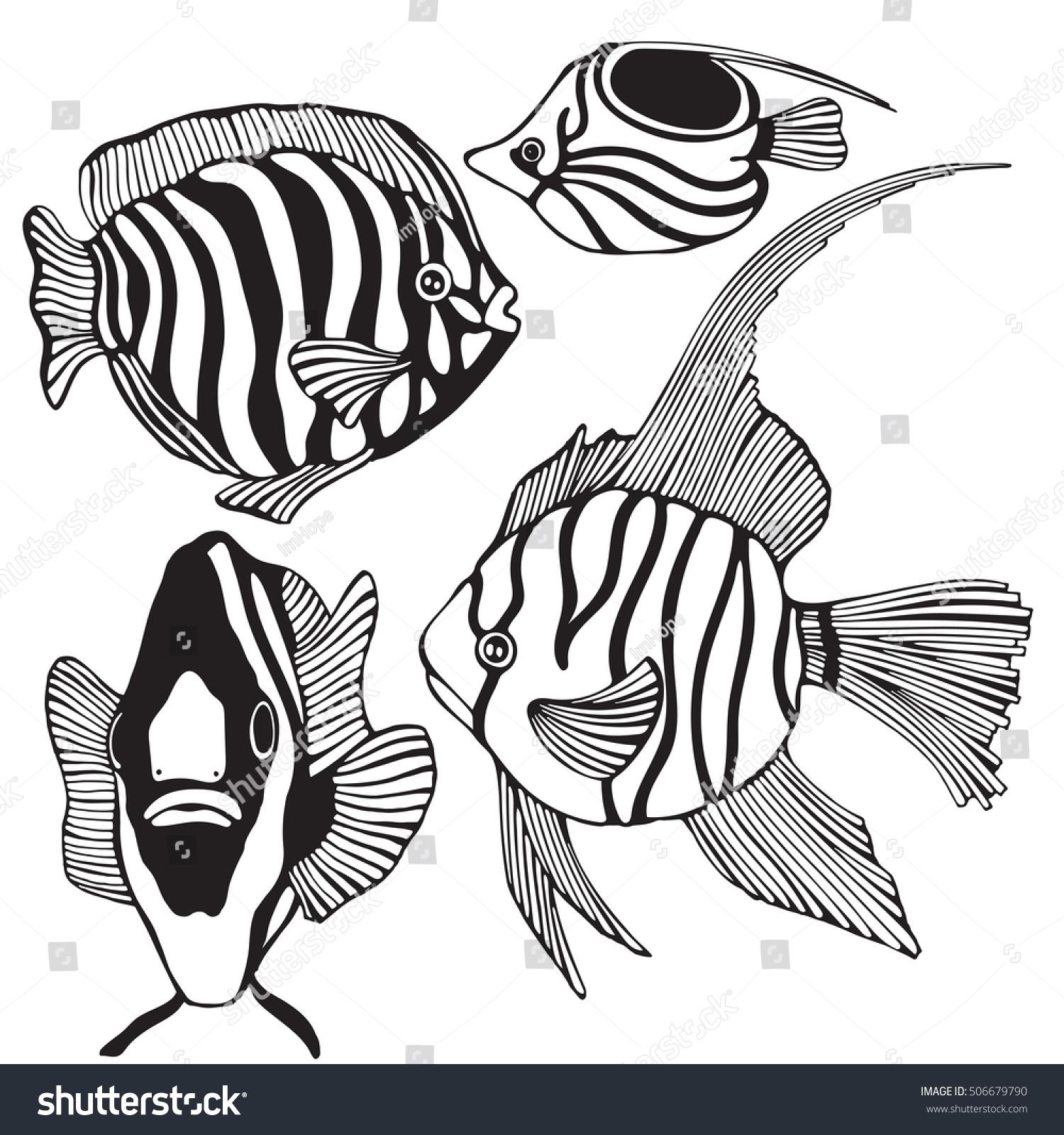 set black white tropical fish stock vector 506679790 shutterstock