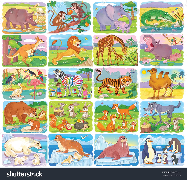 Big Set Different Wild Animals Collection Stock Illustration ...