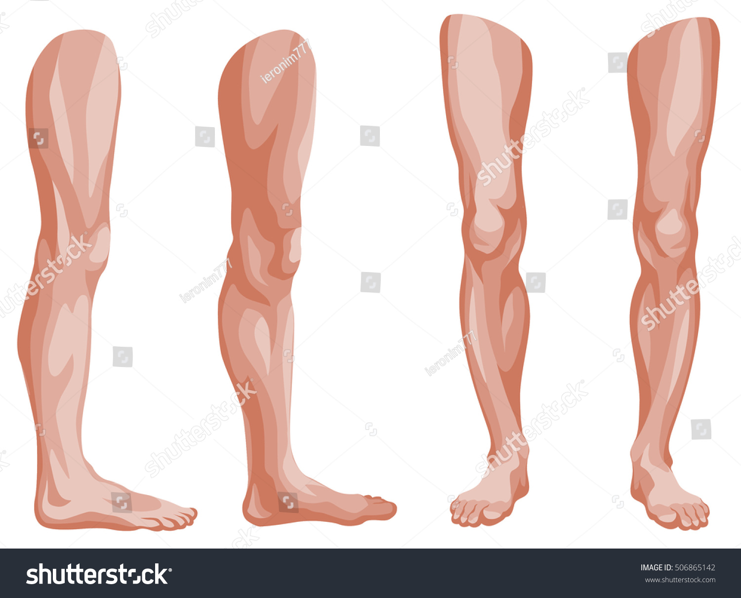 Graphic Illustration Male Legs Front View Stock Vector Royalty Free