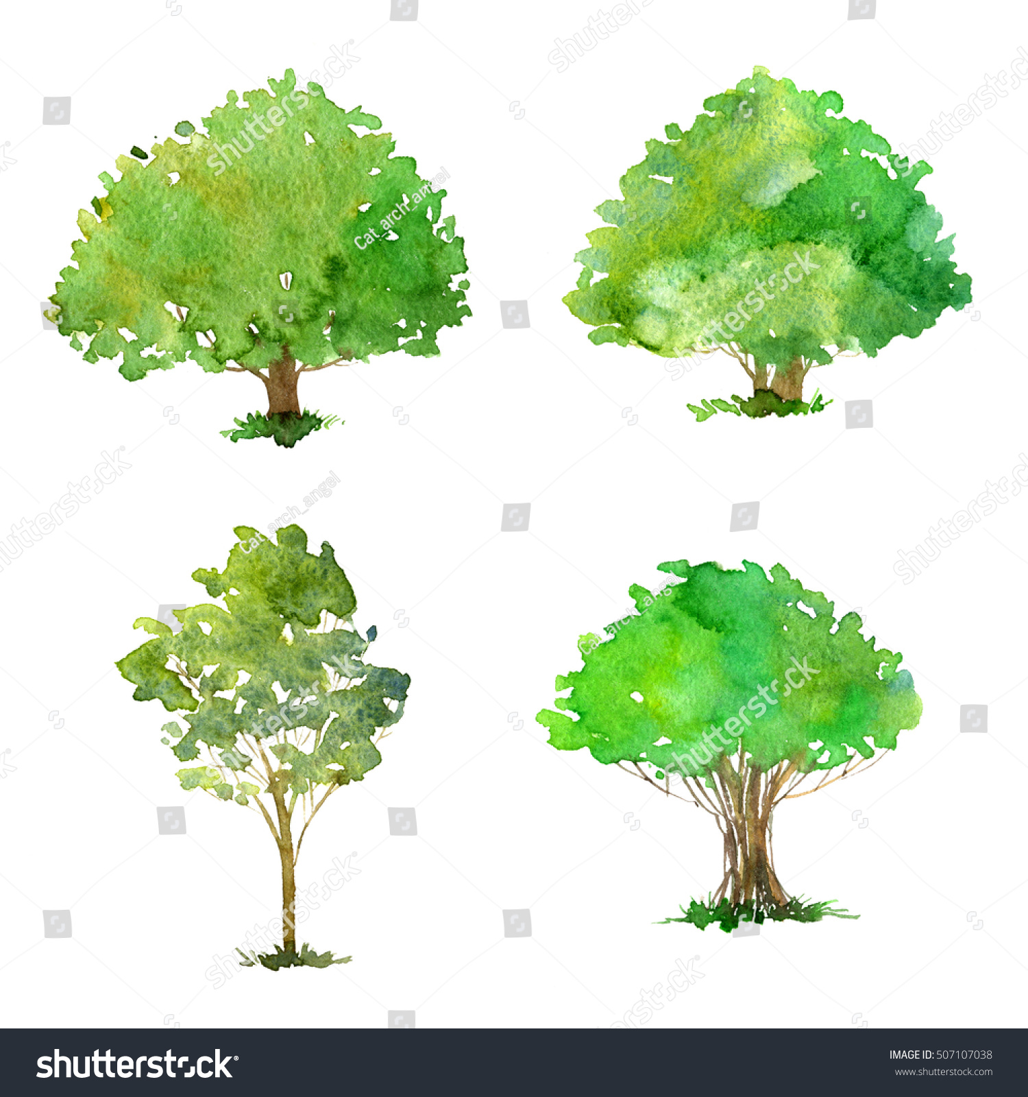 Set Trees Drawing By Watercolor Bushes Stock Illustration ... for Tree Drawing With Watercolor  75tgx