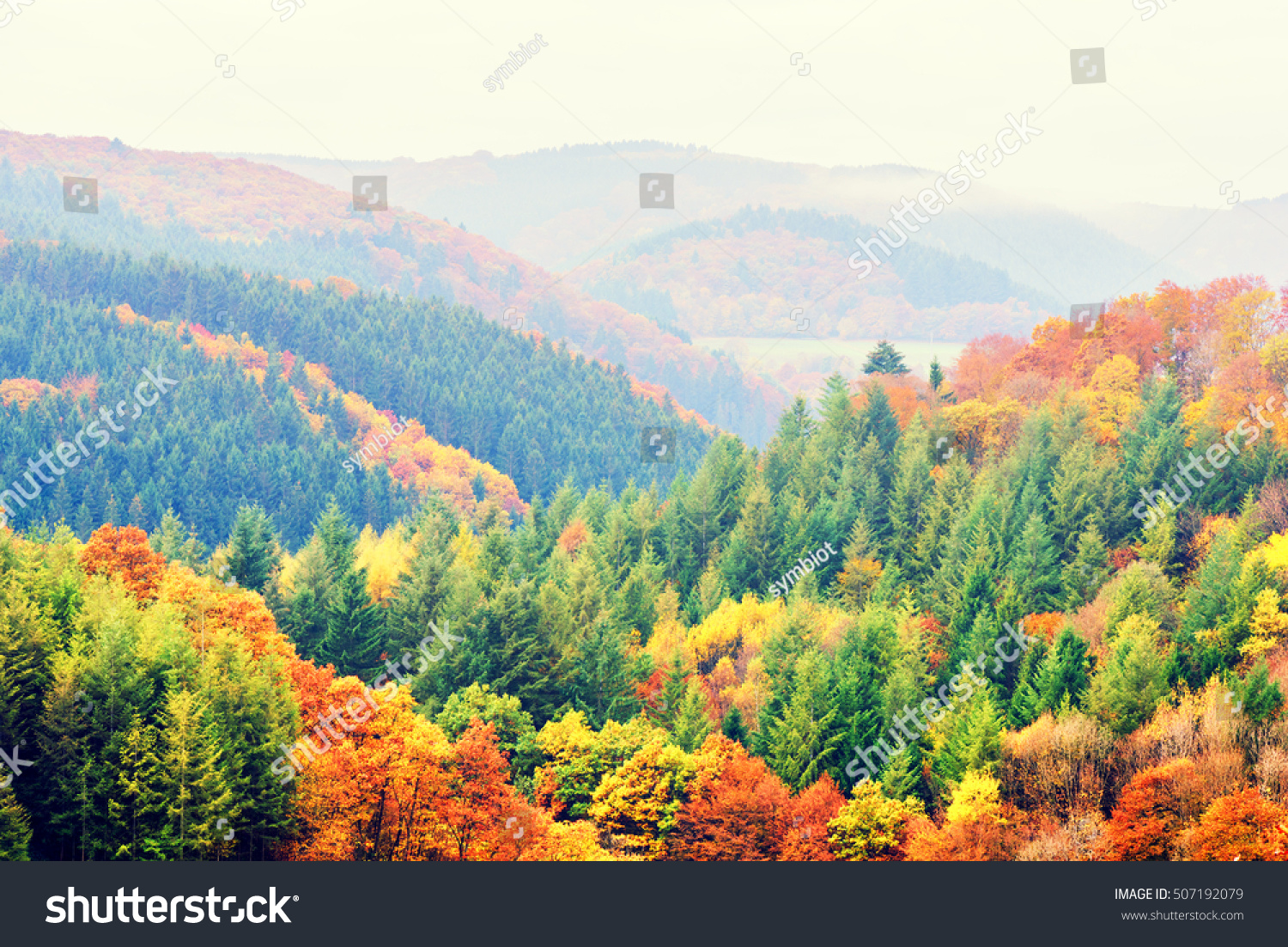 Autumn Landscape Colorful Fall Trees Top Stock Photo (Royalty Free ...