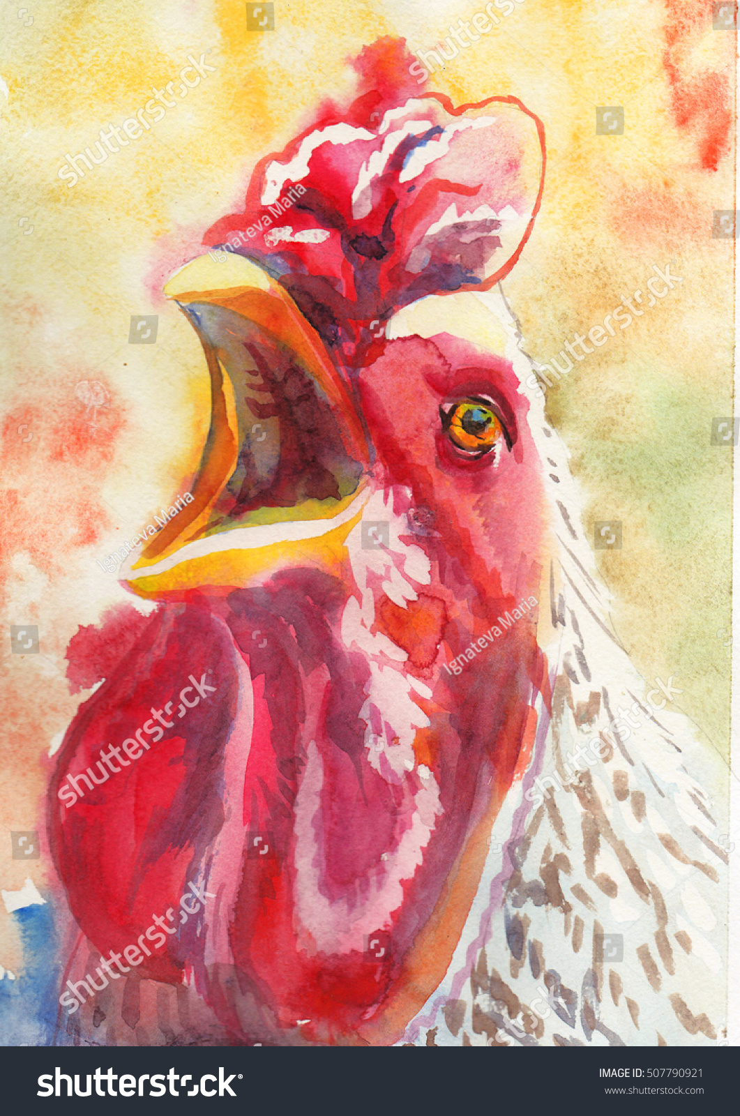 Rooster Painted Watercolors Stock Illustration 507790921 Shutterstock