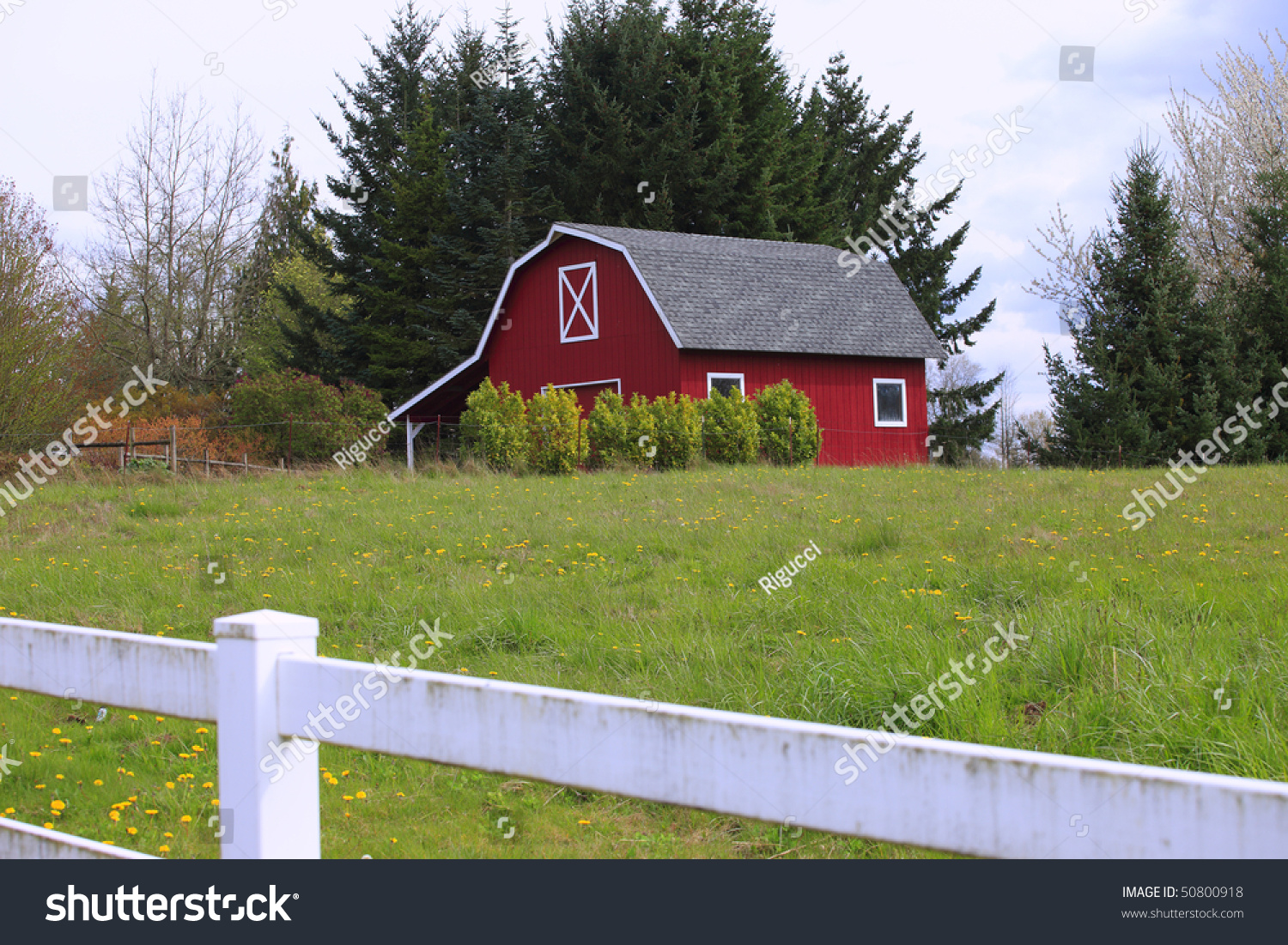 Red Barn House In A Country Stock Photo 50800918