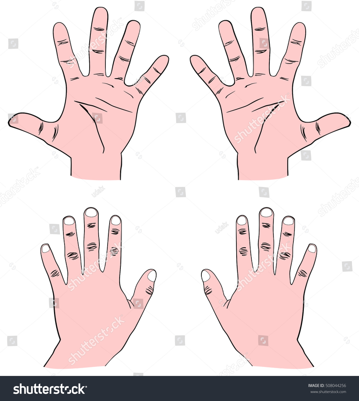 Vector Pair Human Hands Palm Front Stock Photo (Photo, Vector ...