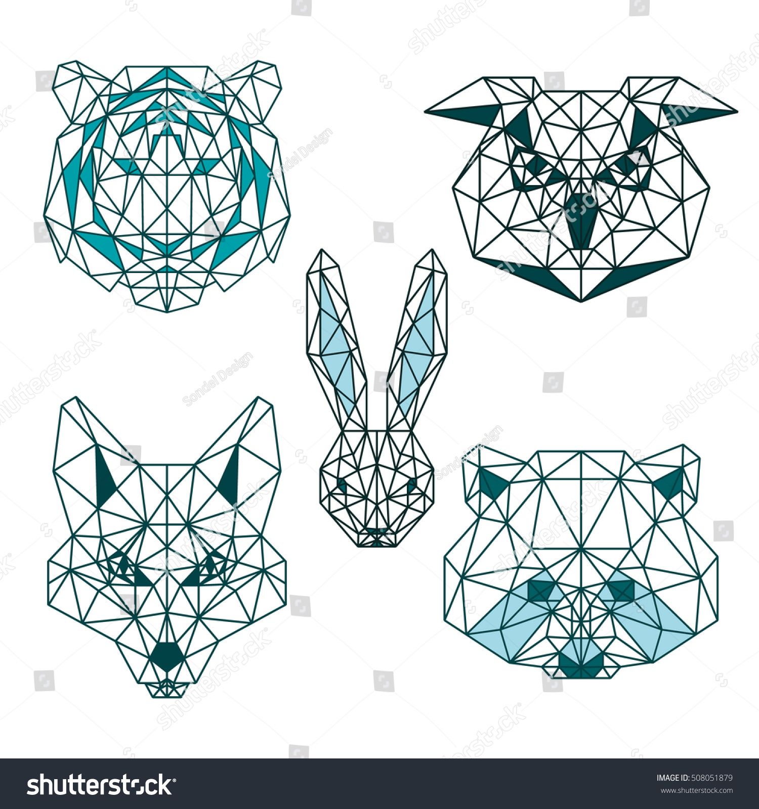 Ppm Wiring Diagram For Vector Animal Head Great Installation Of Raccoon Diagrams Schema Rh 44 Verena Hoegerl De Cell
