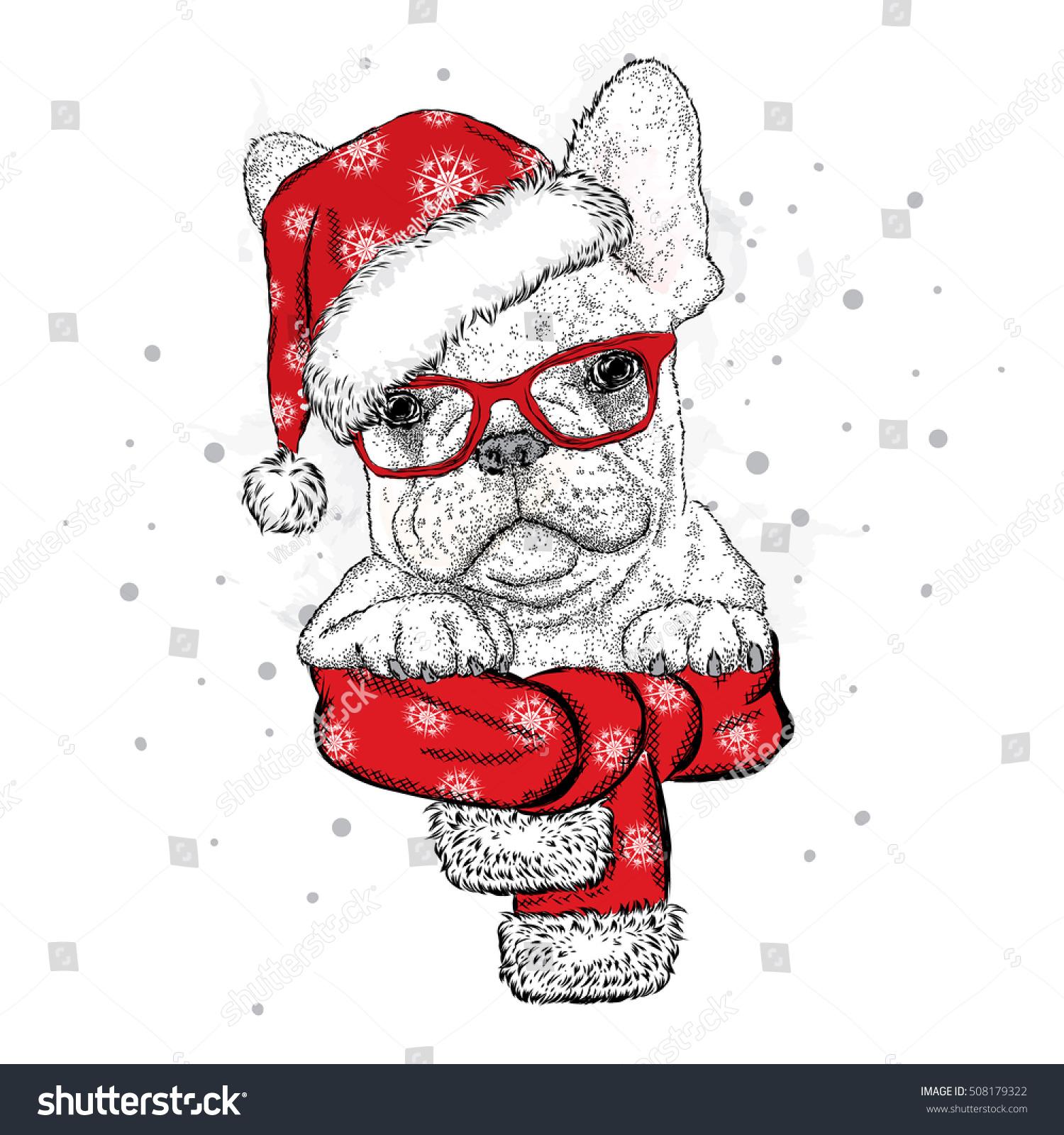 French Bulldog Christmas Hat Sunglasses Vector Stock