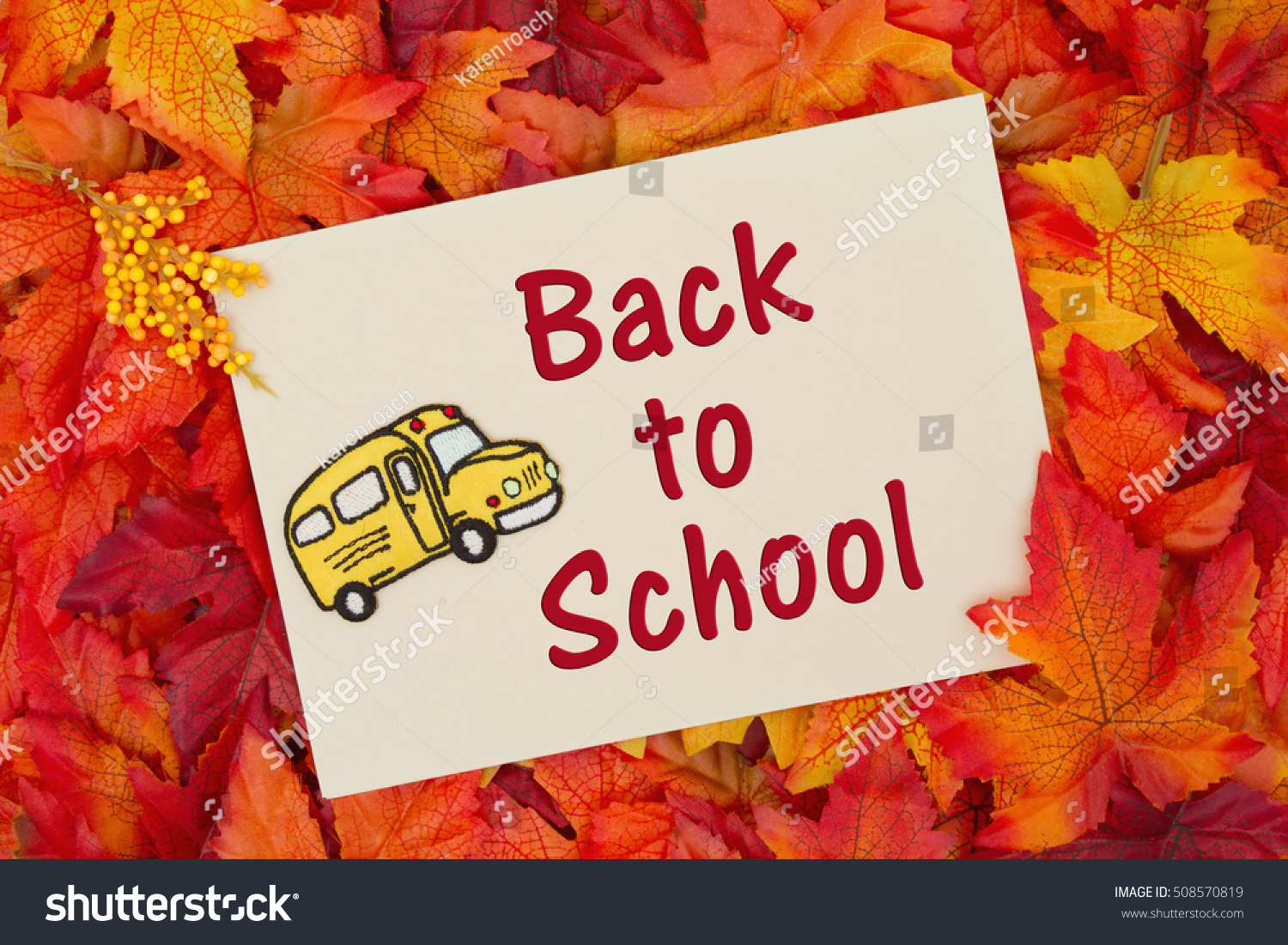 Back School Message Some Fall Leaves Stock Photo Royalty Free