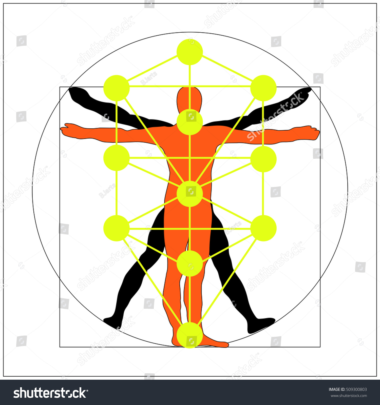 Kabbalah Tree Life Leonardo Da Vinci Stock Vector Royalty Free 509300803 Check out our tree of life kabbalah selection for the very best in unique or custom, handmade pieces from our pendants shops. https www shutterstock com image vector kabbalah tree life leonardo da vinci 509300803