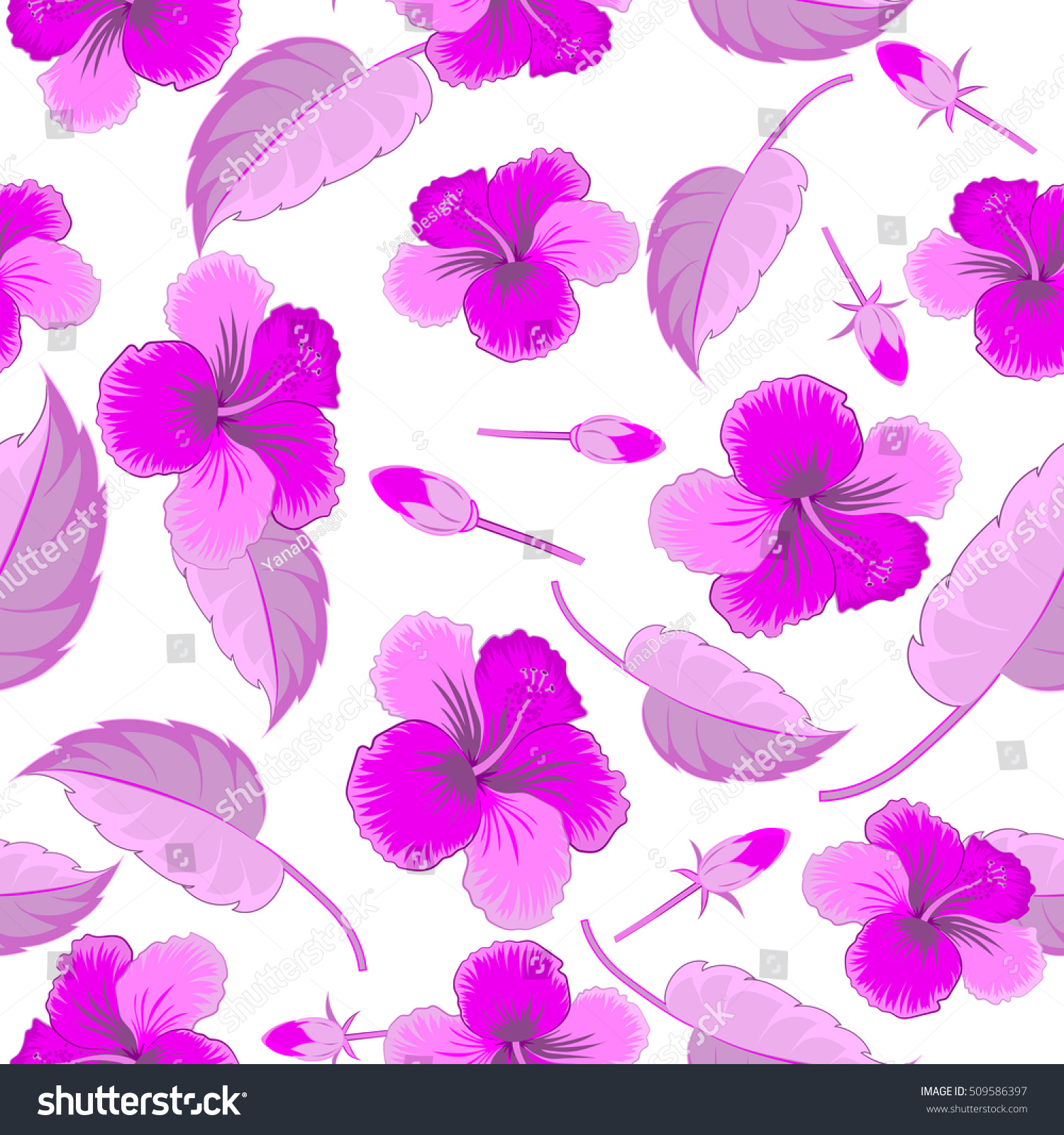Hibiscus Flowers On White Background Violet Stock Vector Royalty