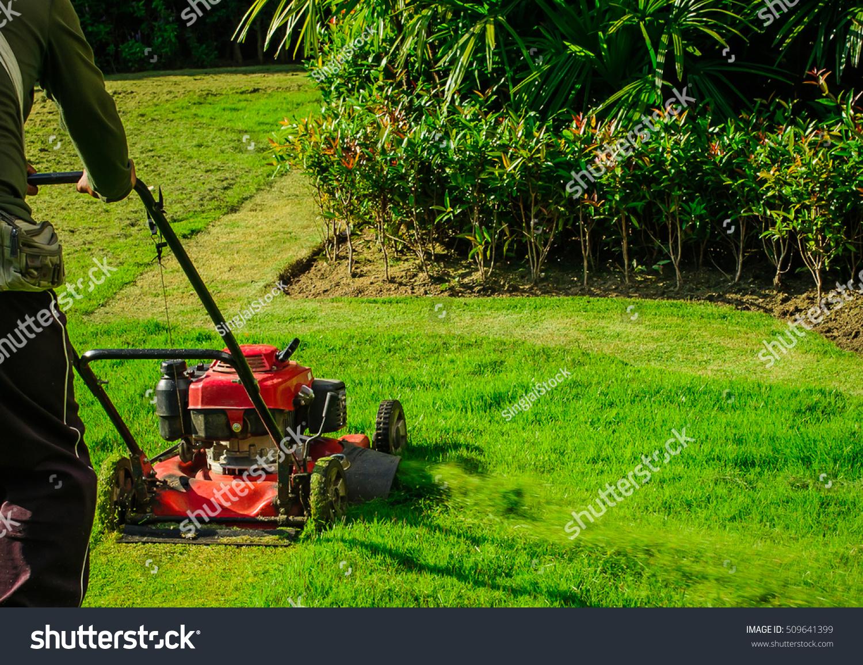 lawn mower cutting green grass backyardgarden stock photo