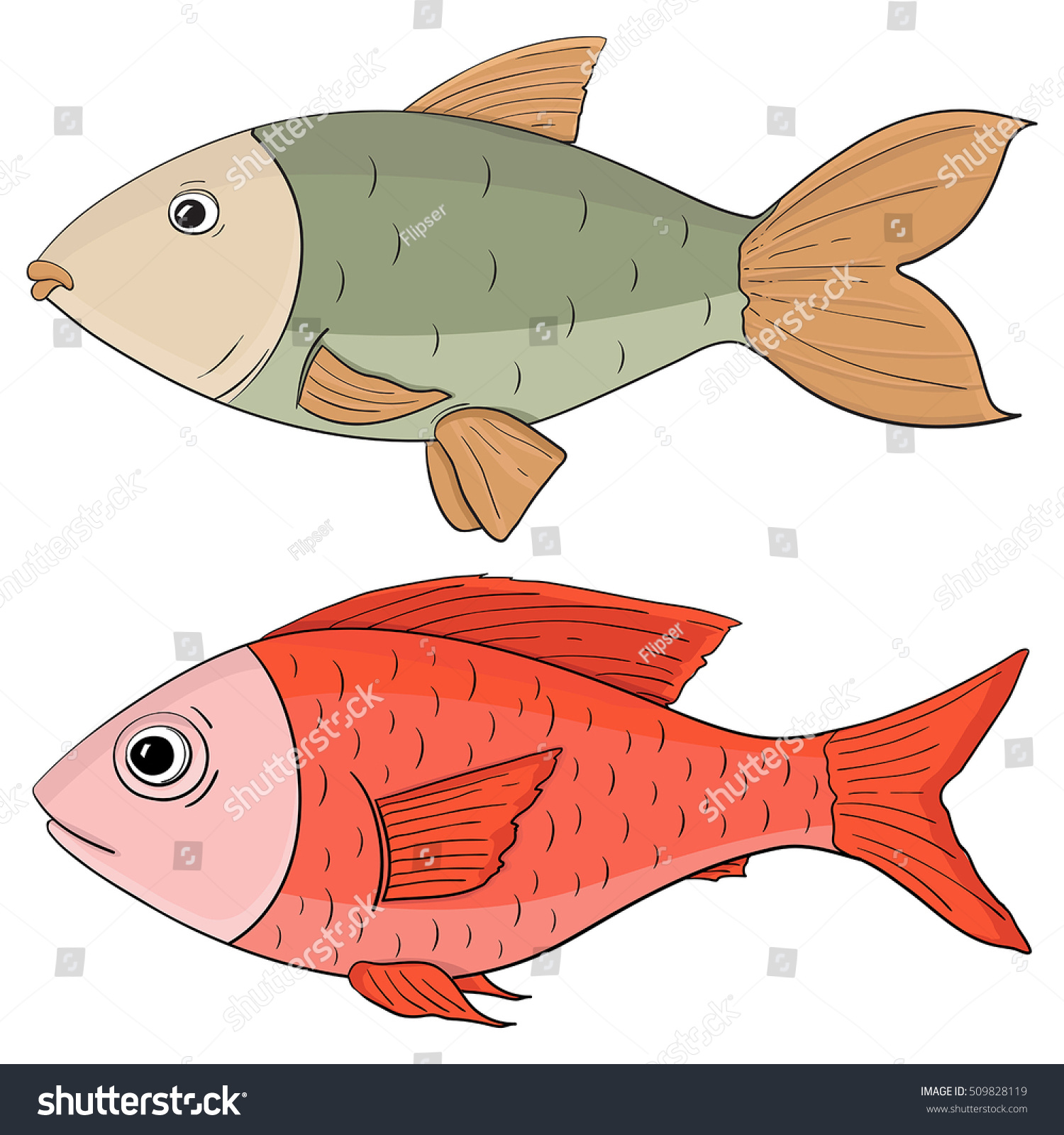 Fish Colored Hand Drawing Vector Illustration Stock Vector 509828119 ...
