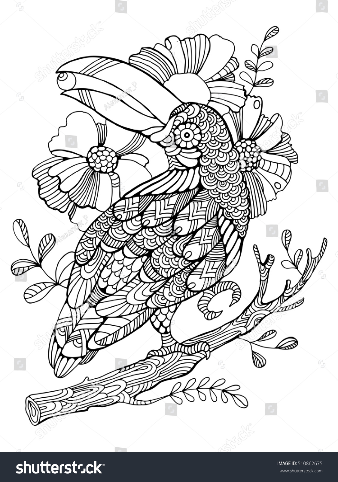 Toucan Bird Coloring Book Adults Raster Stockillustration 510862675 ...