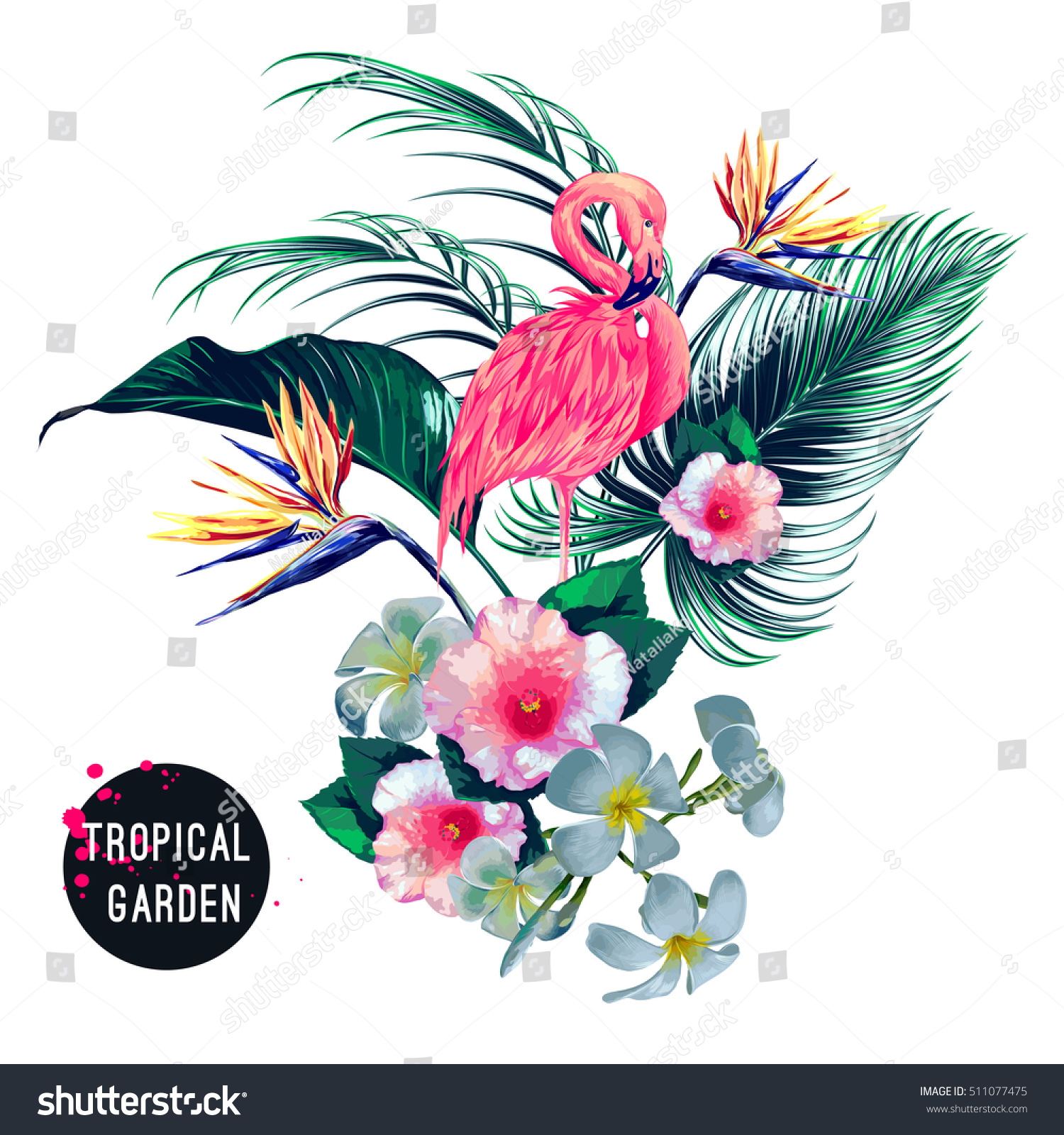Tropical flowers palm leaves jungle plants stock vector 511077475 tropical flowers palm leaves jungle plants hibiscus bird of paradise flower izmirmasajfo