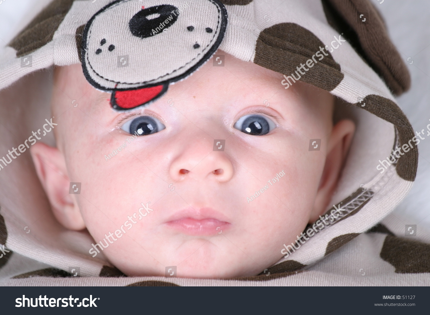 Baby Puppy Costume Stock Photo Edit Now 51127