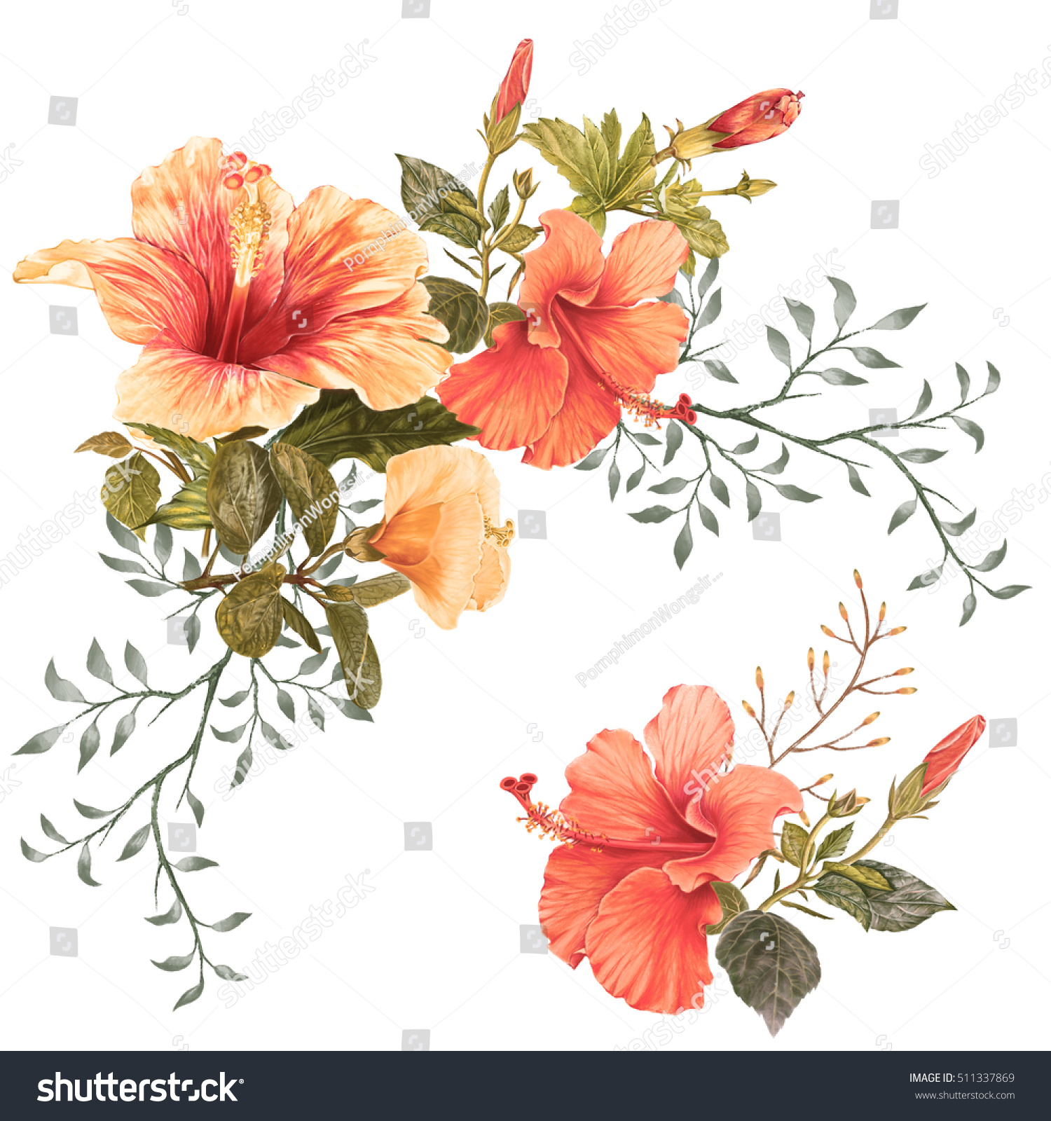 Illustration beautiful flower on white background illustration of beautiful flower on white background voltagebd Image collections
