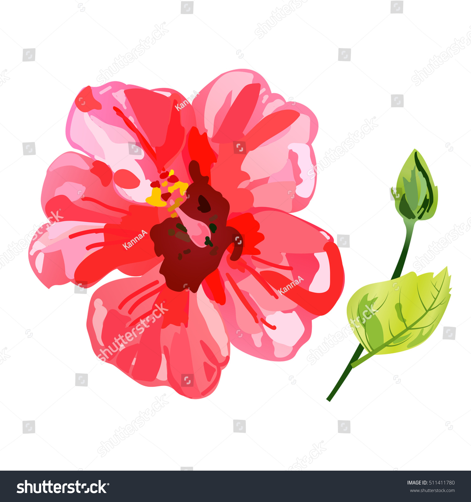Red Watercolor Hibiscus Flower Vector Illustration Stock Vector