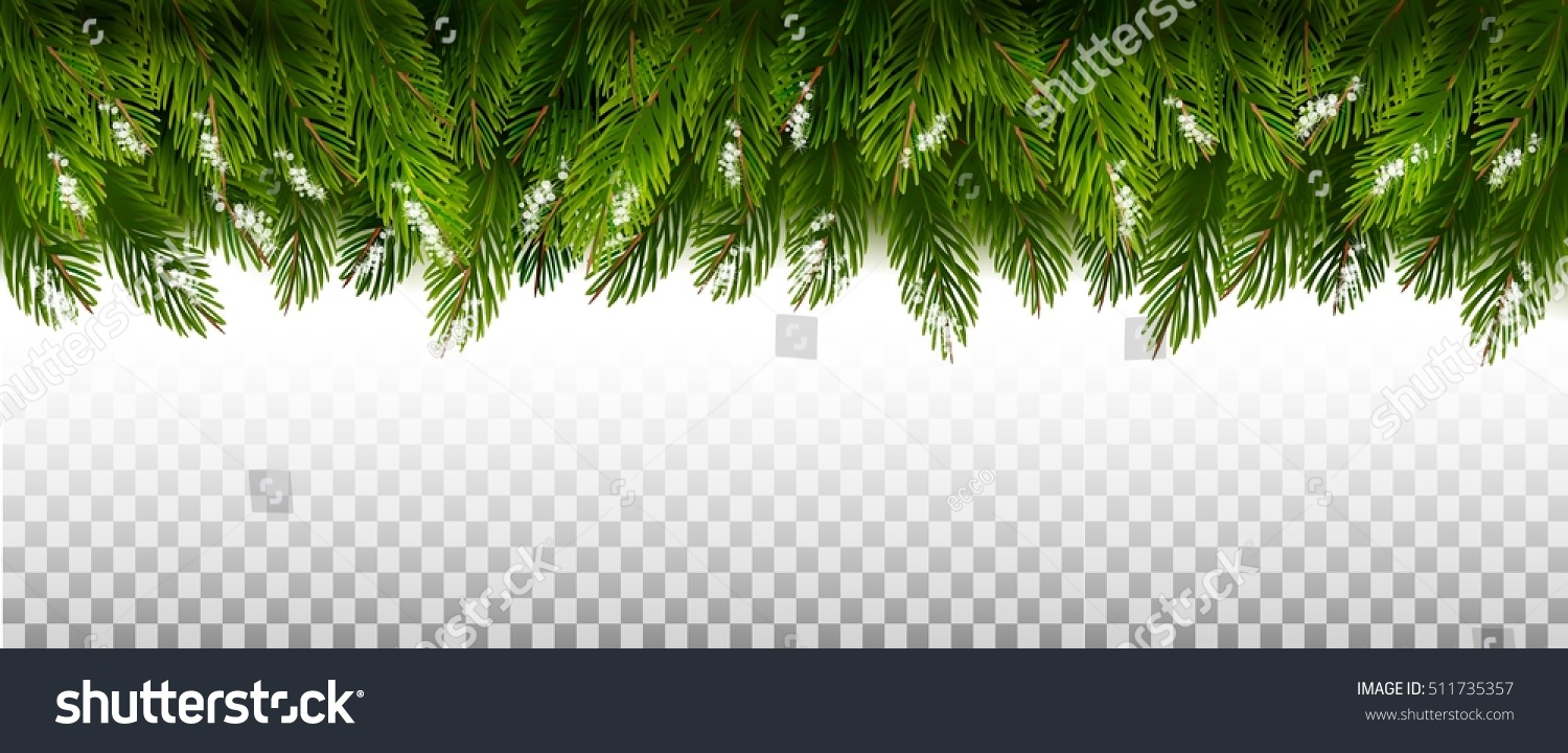 green christmas tree branches on a transparent background vector - Christmas Tree Transparent