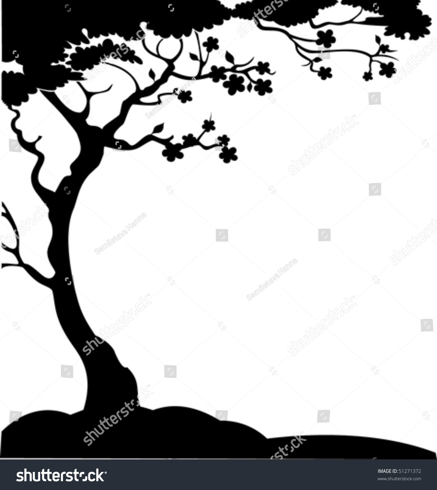 Cherry Blossom Tree Black And White: Illustration Cherry Tree Flowers Silhouette On Stock