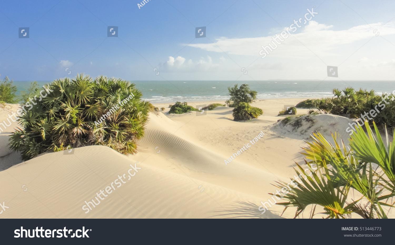 Shela beach in Lamu. Kenya
