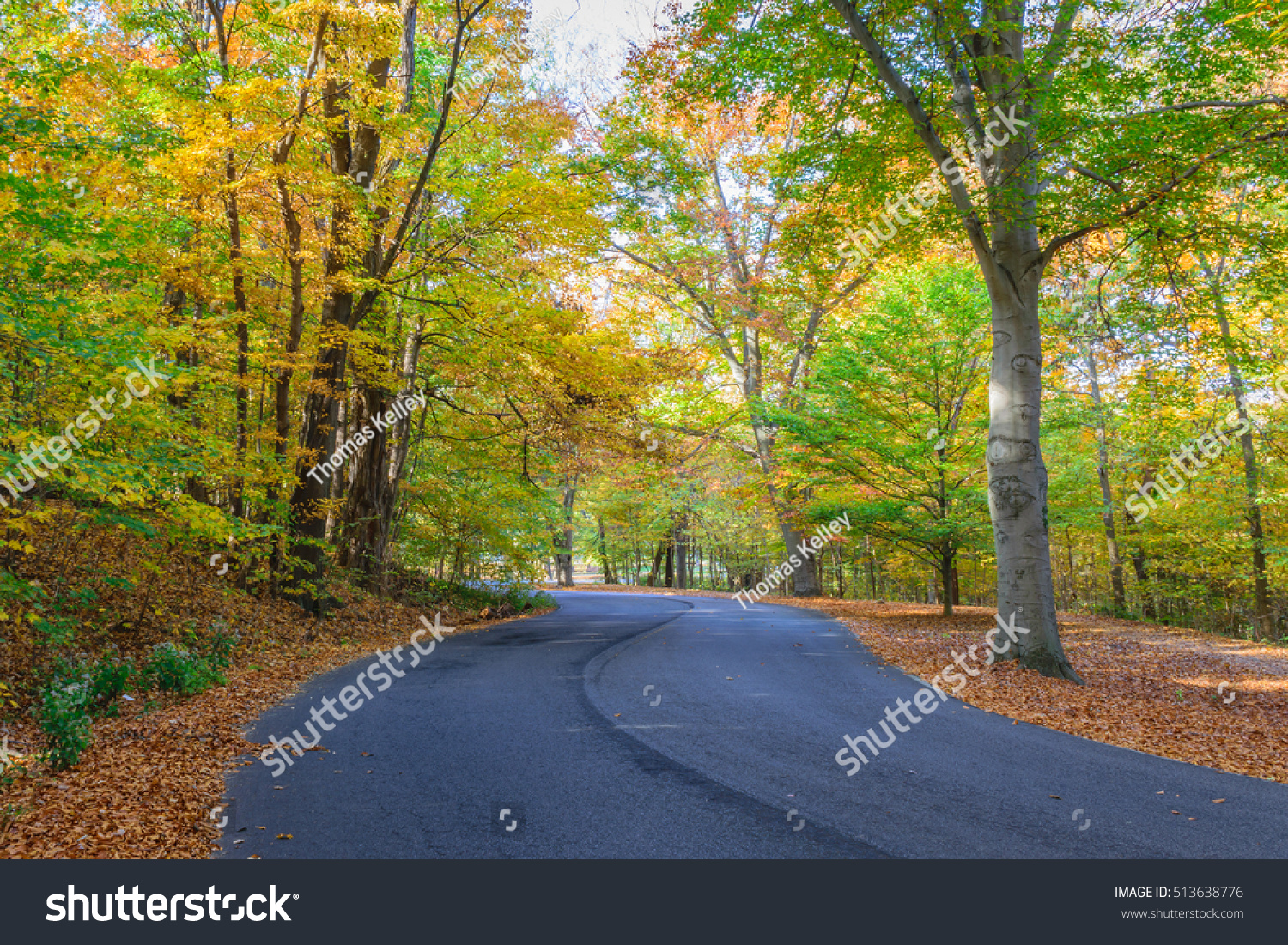 Road Winding Through Trees Fall Colors Stock Photo (Royalty Free ...