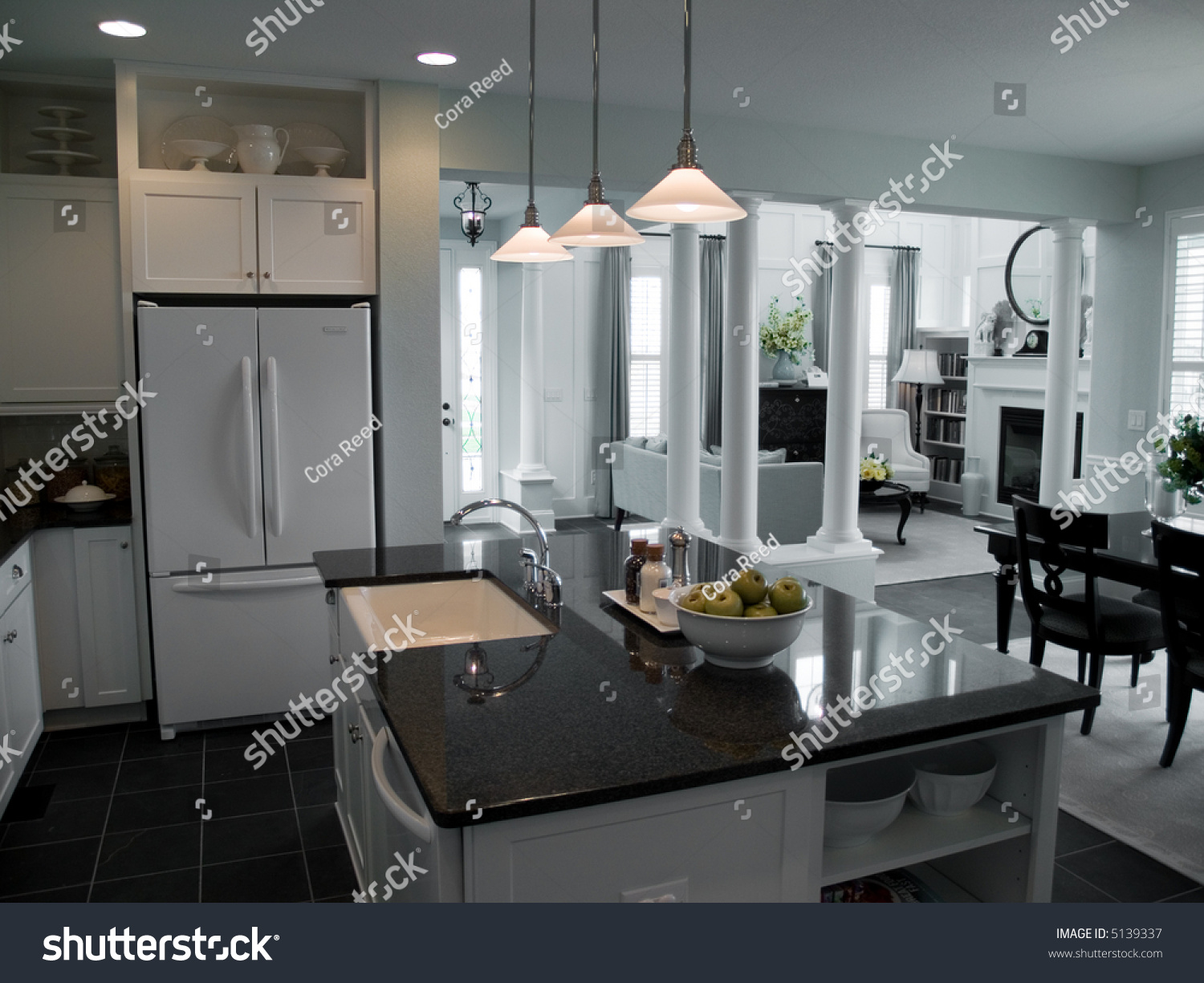 Modern Open Floor Plan Kitchen Into Stock Photo 5139337 Shutterstock