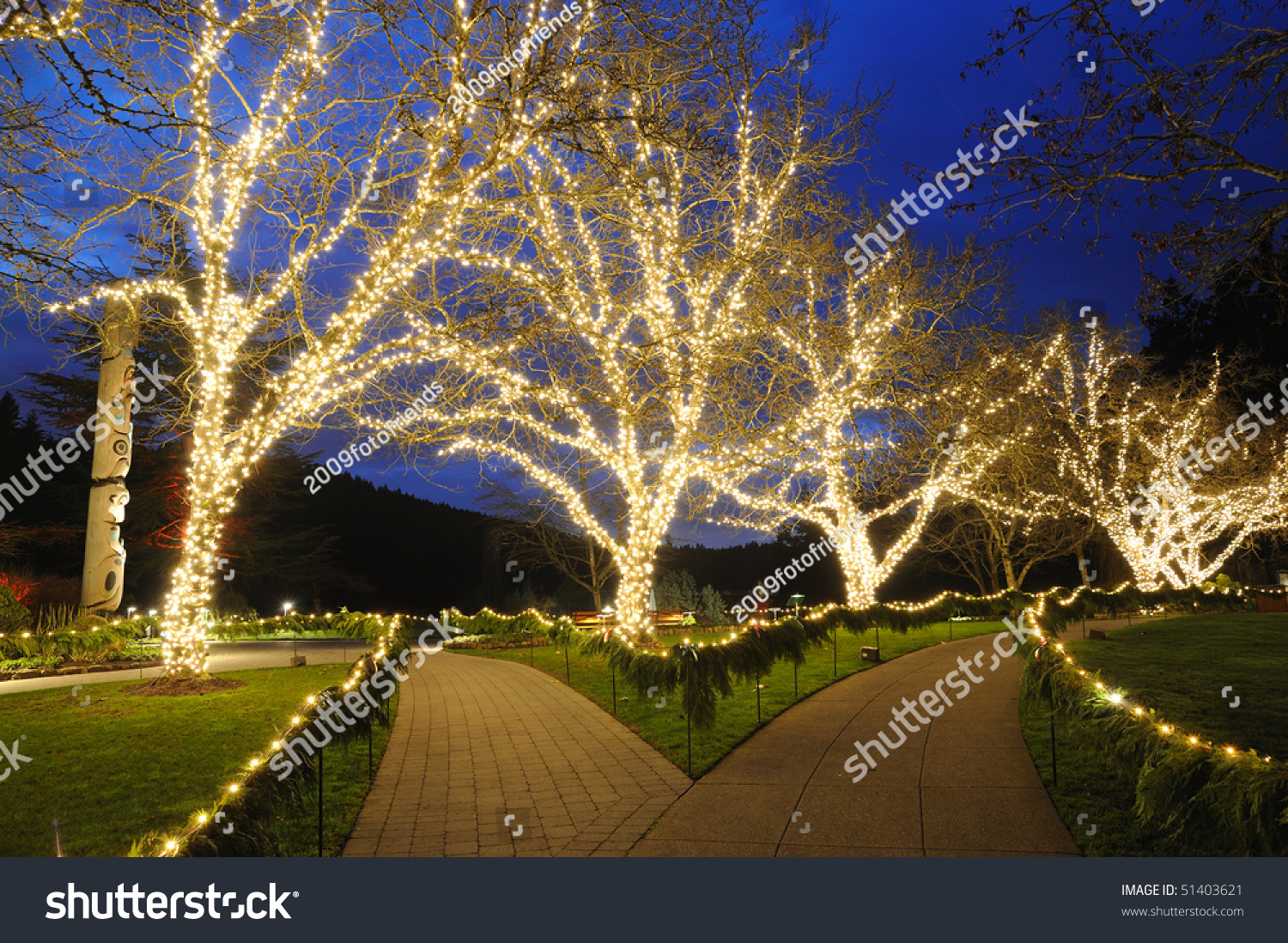 Beautiful Sunken Garden Night Scene Christmas Stock Photo (Download ...