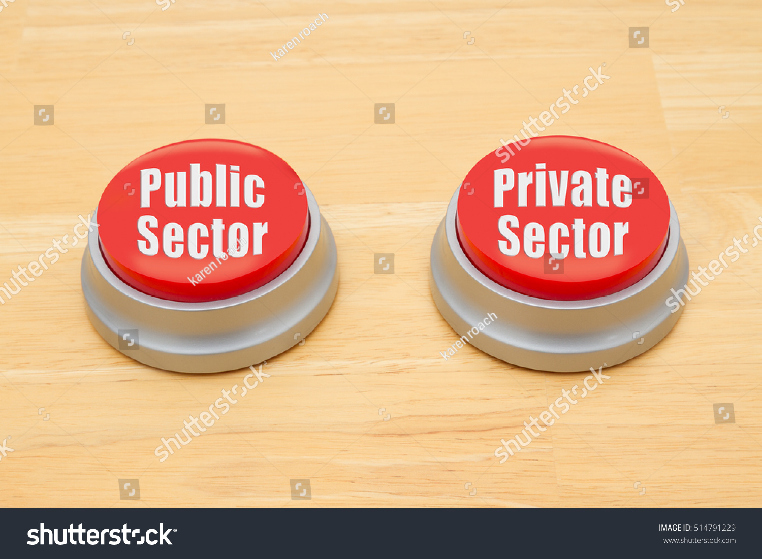 public sector and private sector difference