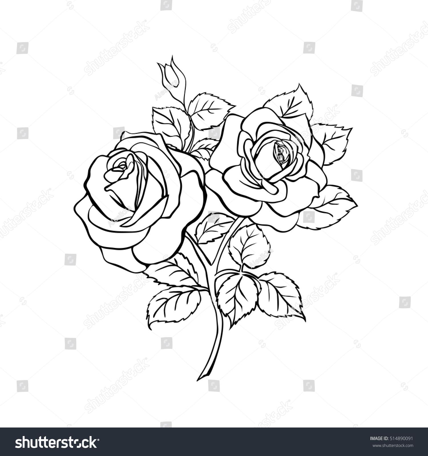 Rose Sketch Black Outline On White Stock Vector 514890091 - Shutterstock