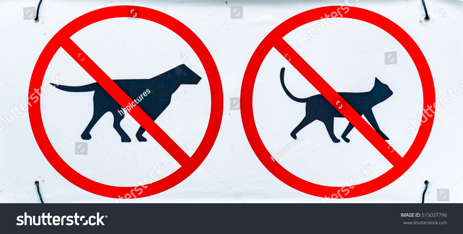 no pets cats dogs allowed signs stock photo edit now 515037796