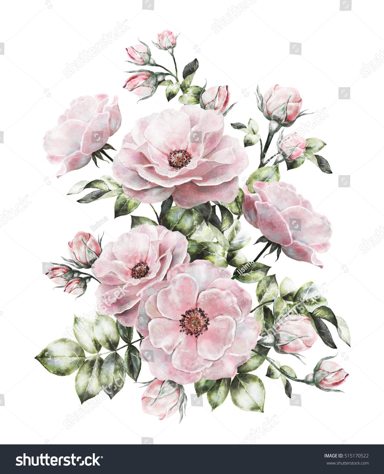 Vintage Watercolor Flowers Floral Illustration Flower Stock