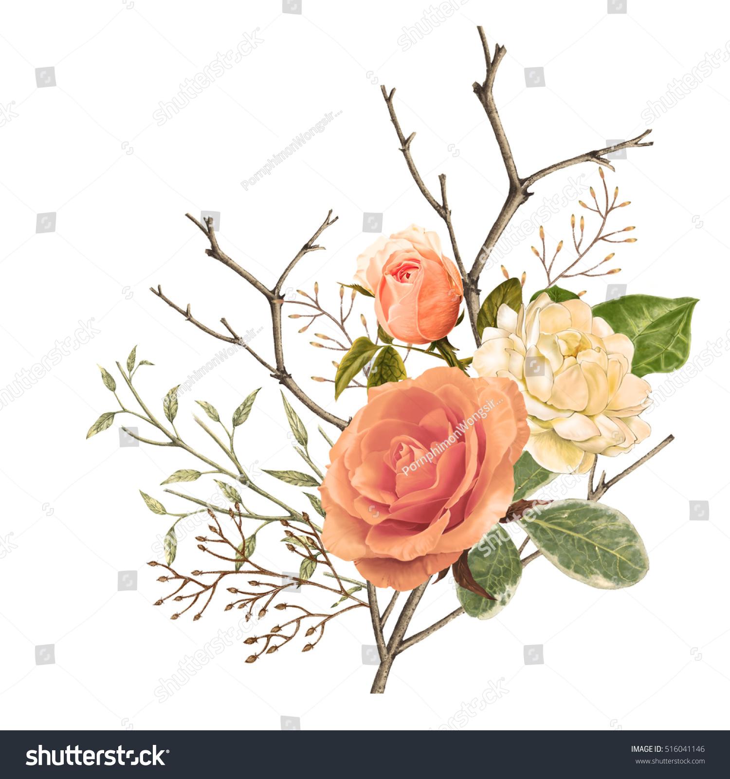 Illustration Beautiful Flower On Black Background Stock Illustration