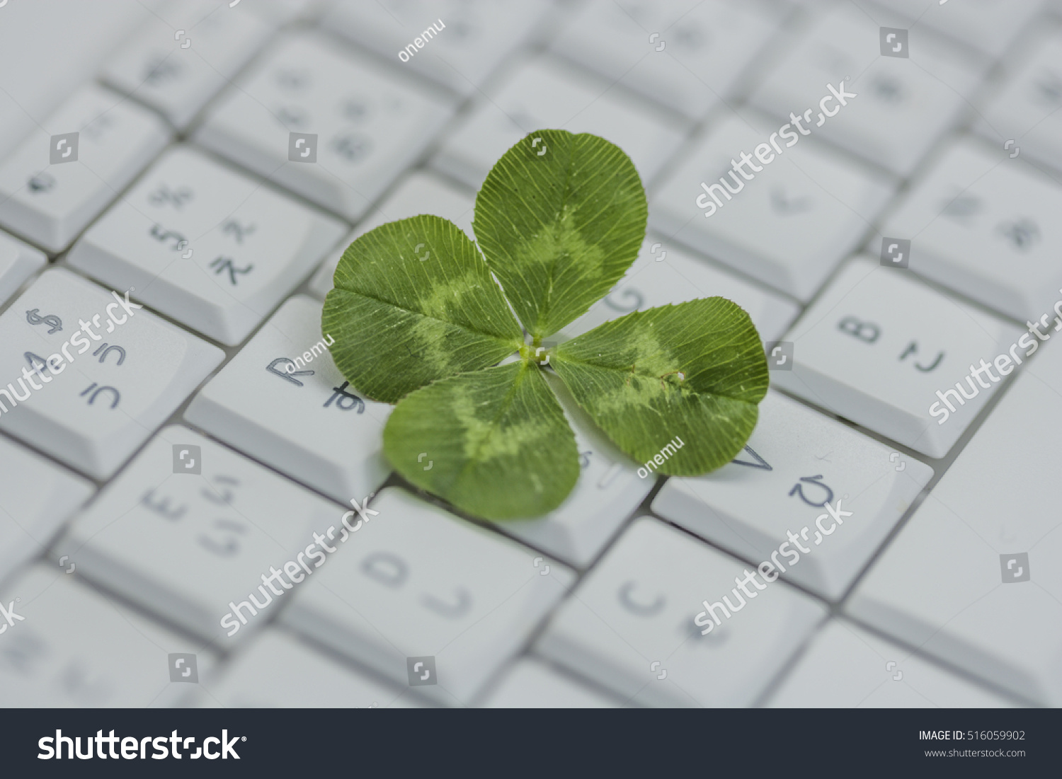 Four Leaf Keyboard Stock Photo Royalty Free 516059902 Shutterstock
