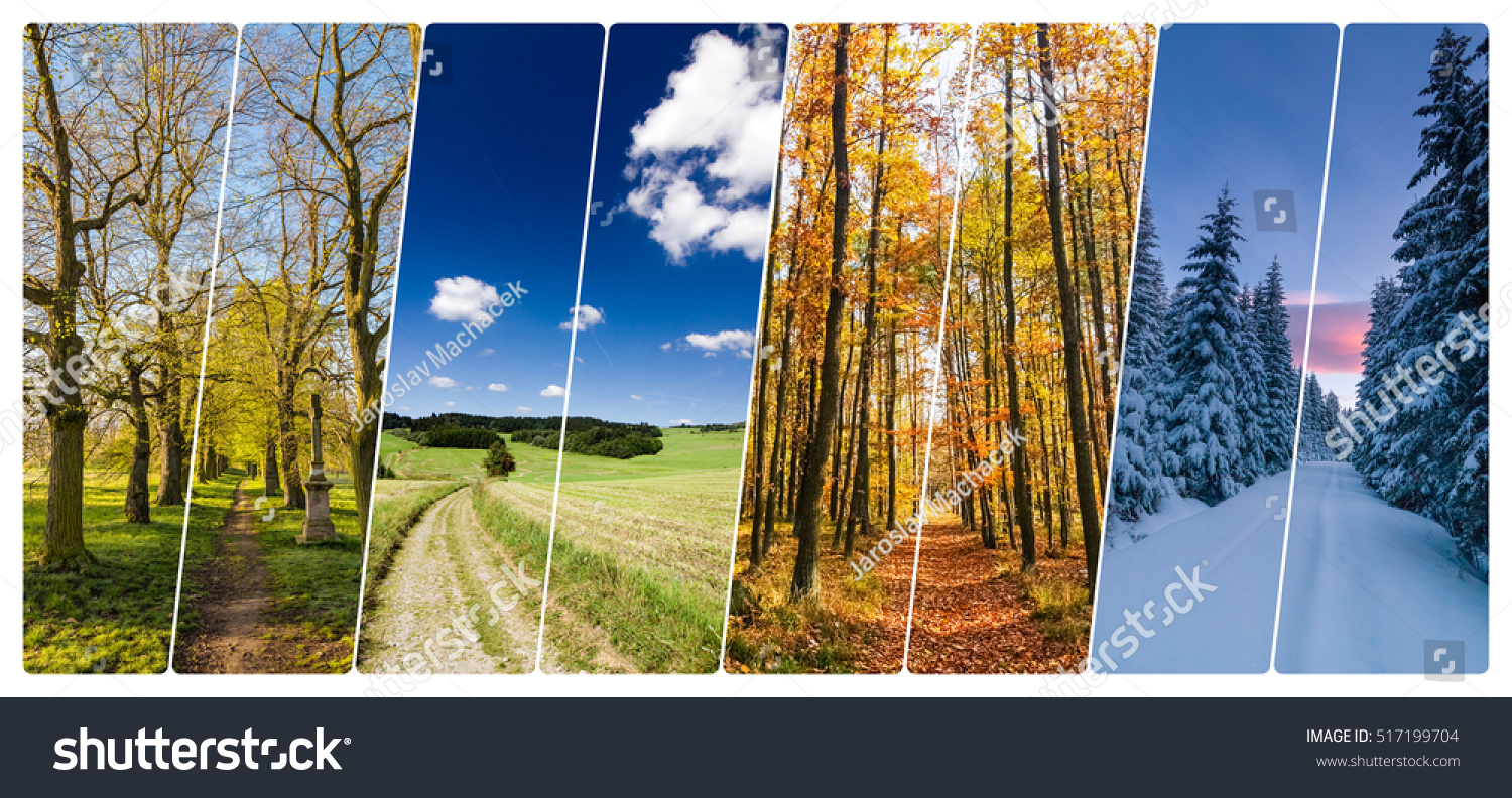 Four season collage from vertical banners with roads in landscape. All used photos belong to me. #517199704