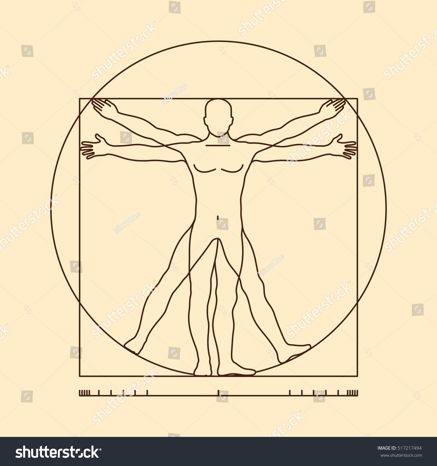 Leonardo Da Vinci Vitruvian Man Form Stockvector 517217494 ...